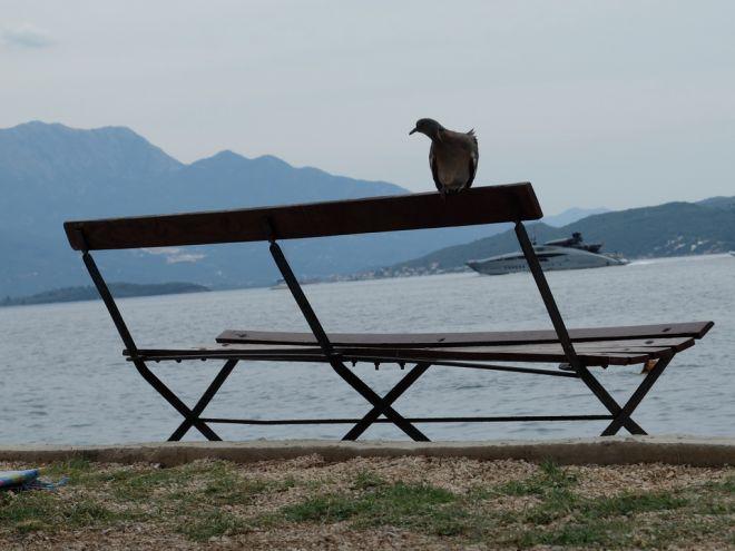 Joga-odmor-Crna-Gora-Baosici-pogled